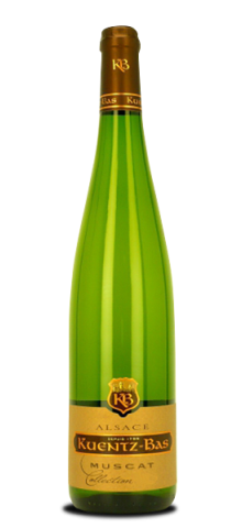 Muscat d'Alsace Collection 2016