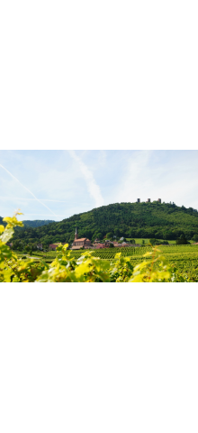 """Colis """"Grands Vins de Kuentz-Bas"""""""